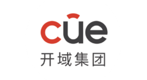 Cue & Co