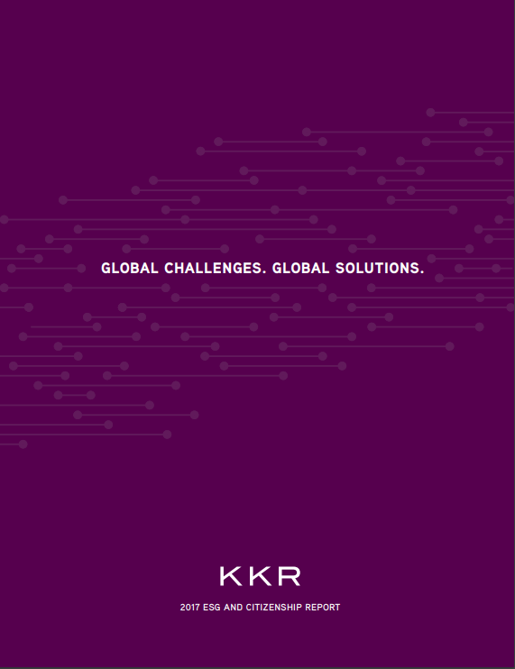 2017 Report Cover